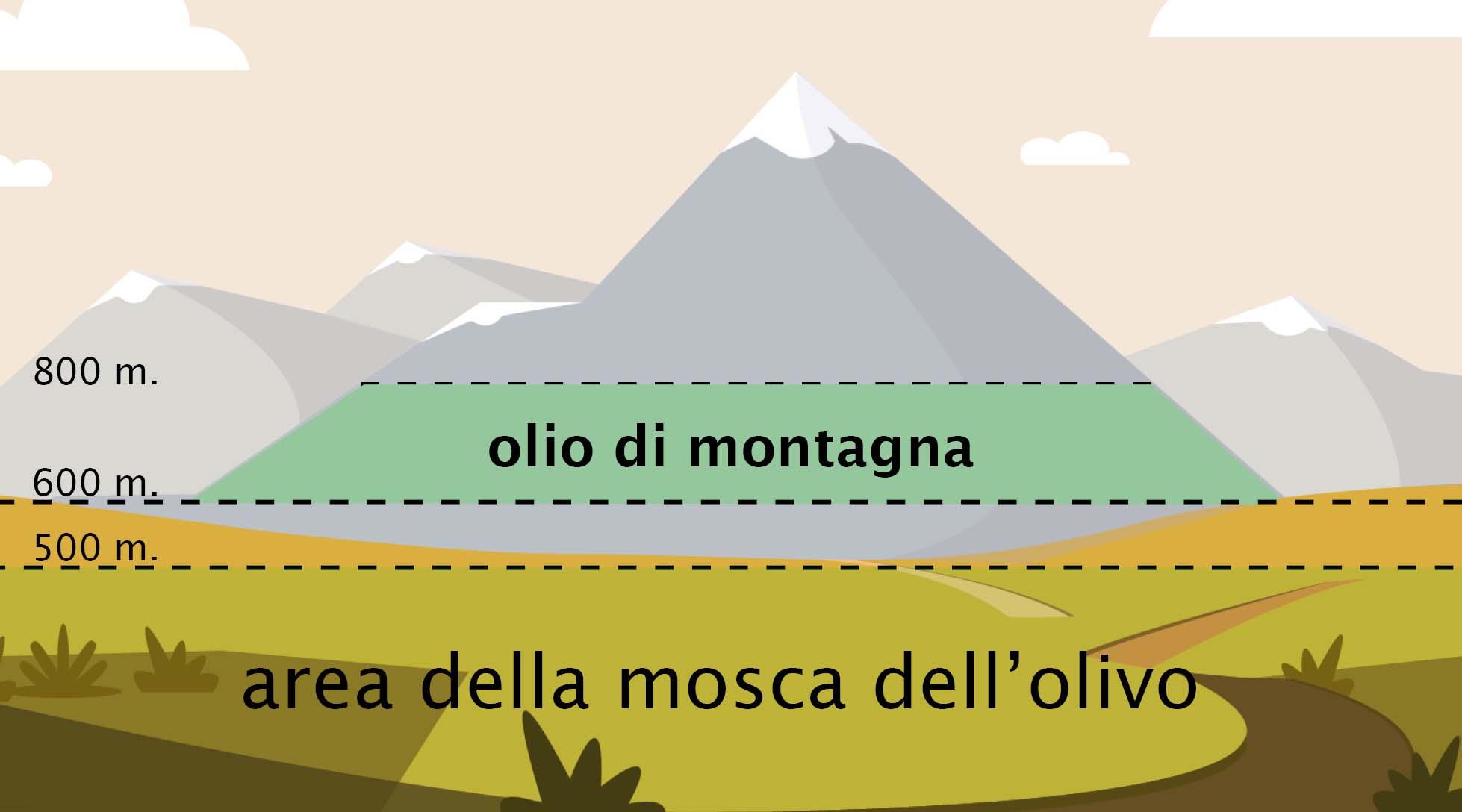 Grafico che mostra l'areale di coltivazione degli ulivi destinati alla produzione dell'olio extravergine di montagna